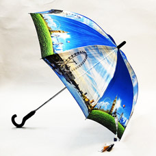 Зонт-трость женская Ame Yoke L58-1Зонты<br><br>
