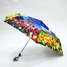 Зонт механический женский Ame Yoke M50-1-1Зонты<br><br>