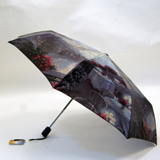 Зонт-автомат женский Ame Yoke ОК58-1 фотосатинЗонты<br><br>