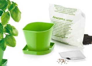 Набор для выращивания пряных растений Sense, базилик, Tescoma 899060Организация и уборка кухни<br><br>