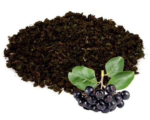Черноплодная рябина в чай